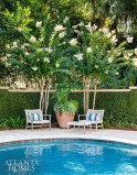 Whether it's breakfast in the courtyard or an afternoon swim, there's plenty of room for privacy or for entertaining. The pool is original to the property, but an outdoor shower was added to rinse off sandy feet after a beach walk.