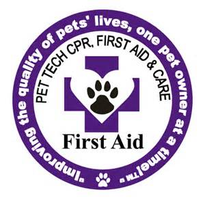 first-aid-patch