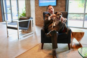 Co-founder Brian Easter's rescue Cami is a regular fixture at the Nebo offices.