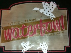 _0023_steel-rain-waterfoul