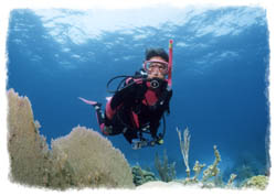 Peak Performance Buoyancy Diver