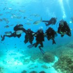 Group of divers under water