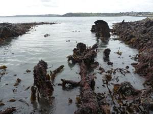 UB 86 on a low tide