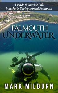 Falmouth Underwater Book Cover