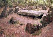 Abb. 2 Eines der Sieben Steinhäuser, 10 km südöstlich von Bad Fallingbostel.