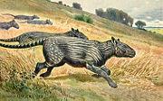 Abb. 4 Die Urformen der heutigen Pferde, wie Phenacodus (Bild) waren noch vergleichsweise kleinwüchsige Huftiere.