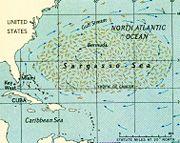 Abb. 6 Die Sargasso-See. Wurde sie einst im Westen durch eine Großinsel begrenzt?