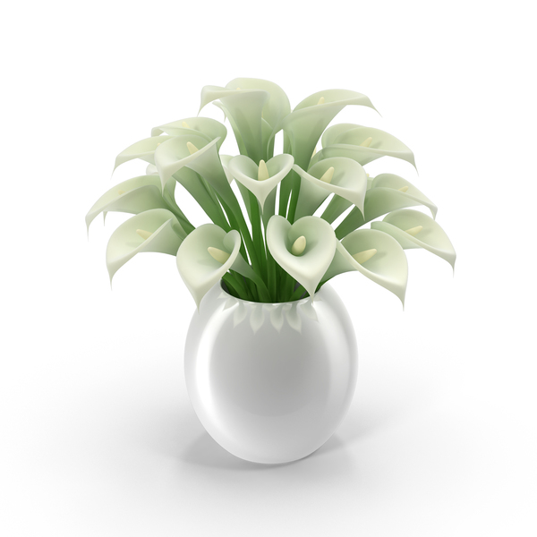 White Calla Lilies In Vase PNG Images Amp PSDs For Download