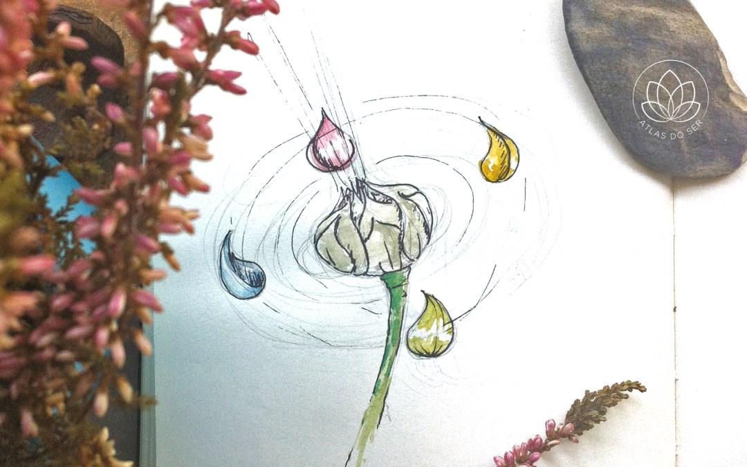a sagrada flor de Lótus
