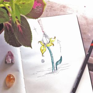 libertação das cordas lótus sagrada desenho intuitivo