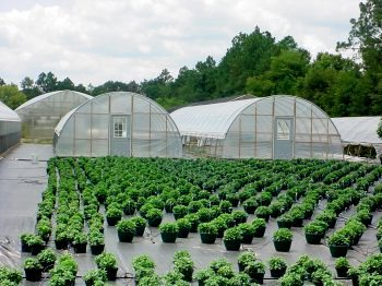 Cold Frame Series | Atlas Manufacturing, Inc