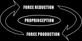 force production ability