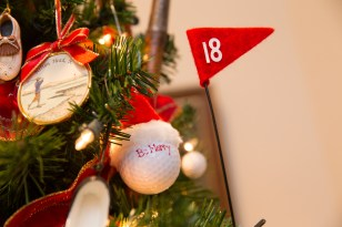 golf tree close up