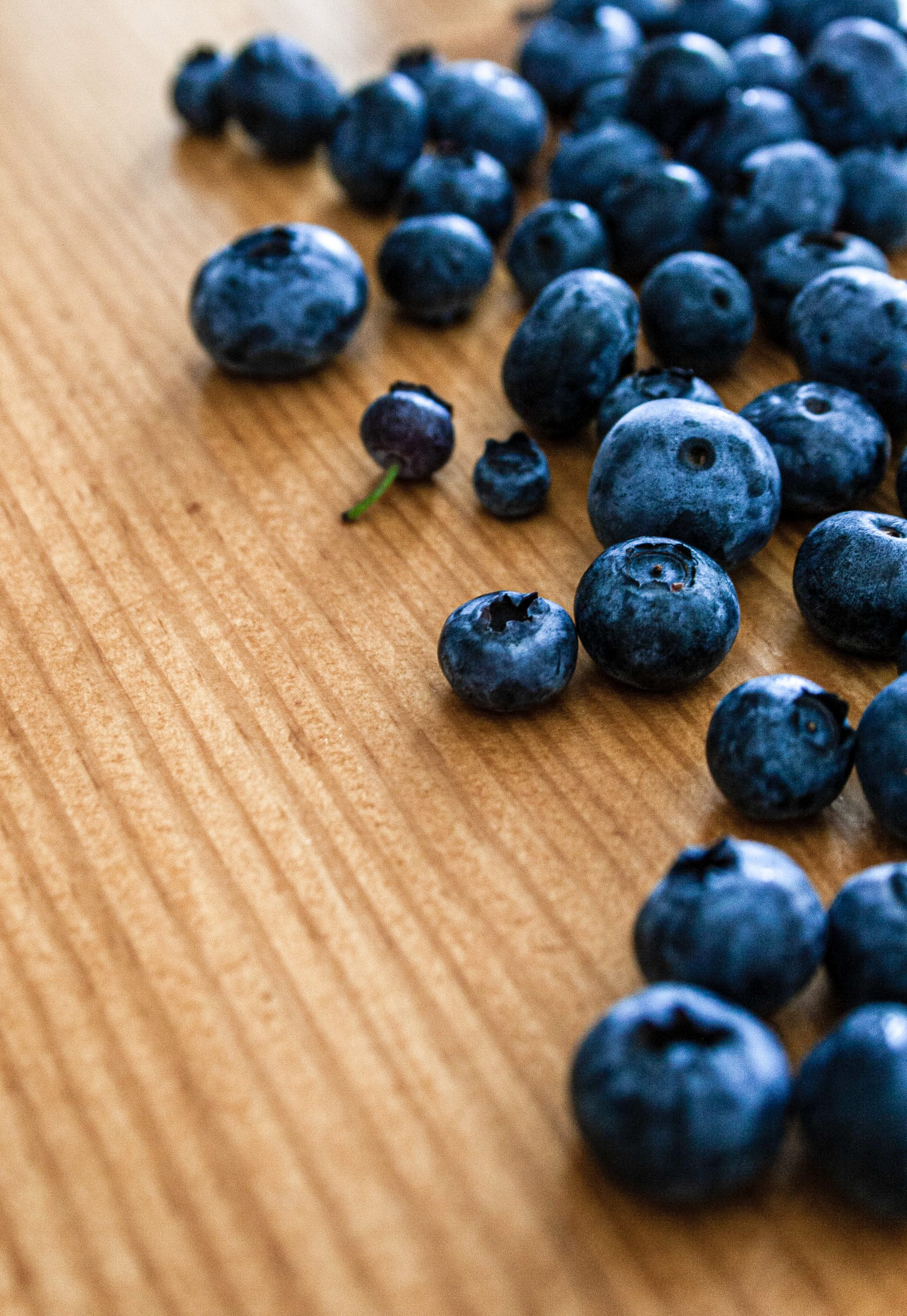 Food photography of blueberries