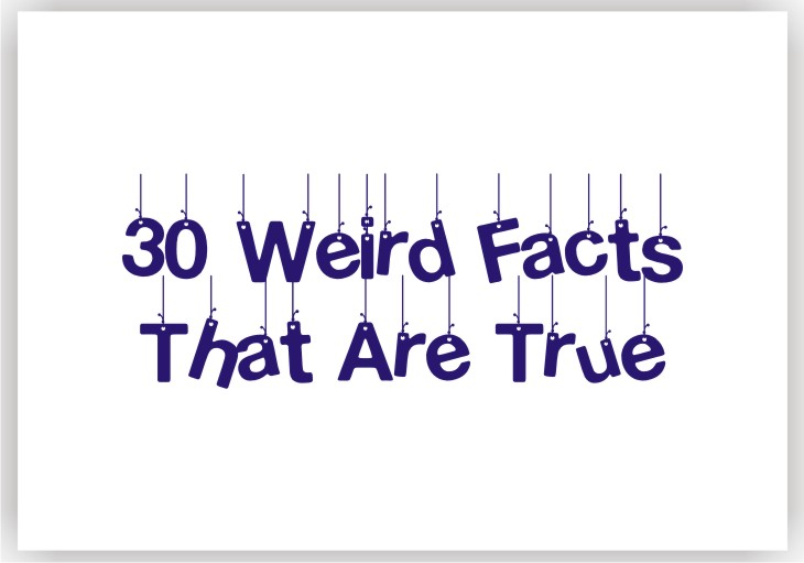 30 Weird facts that are true