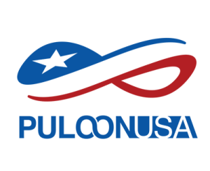 puloon logo small transparent - Puloon SiriUs Wiring Harness
