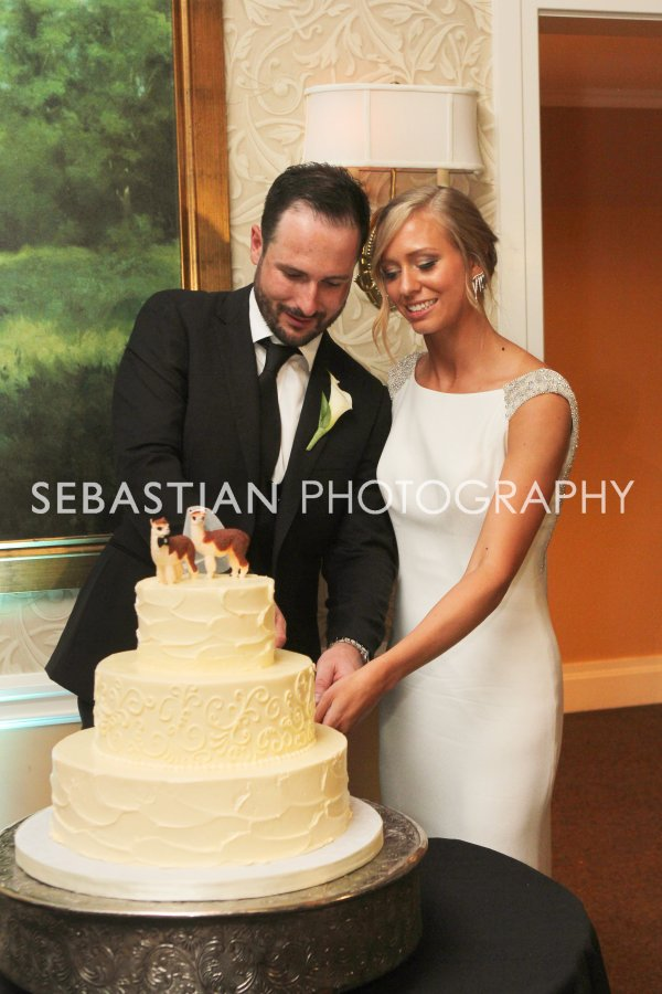 Atmosphere Productions - Jessica and Mike - Sebastian Photography - Schoenig_Cunningham_5291-.jpg