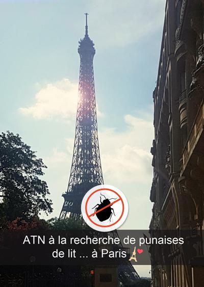 détection canine punaises de lit à Paris