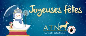 atn-punaises-lit-joyeuses-fetes