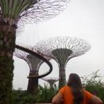 Viaje a Singapur. Marina Bay Sands y Sands Sky Park.