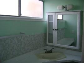 bath-master (5)