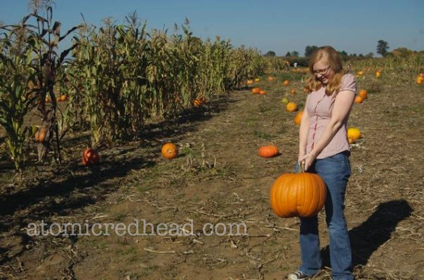 Picking pumpkins in a thrifted plaid short sleeve blouse and low rise jeans and a pair of Converse.