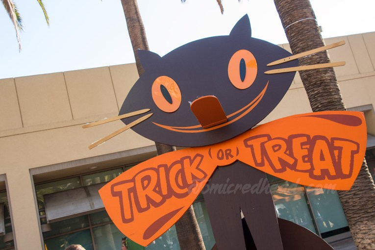 "A large black cat with a big orange bowtie reading ""Trick or Treat"""