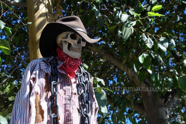 A cowboy skeleton hangs on a lamp post.