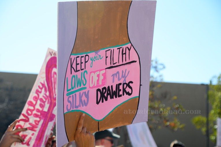 """A sign features a woman's body from the waist to mid-thigh, wearing pink underwear, upon which reads """"Keep Your Filthy Laws Off My Silky Drawers"""""""