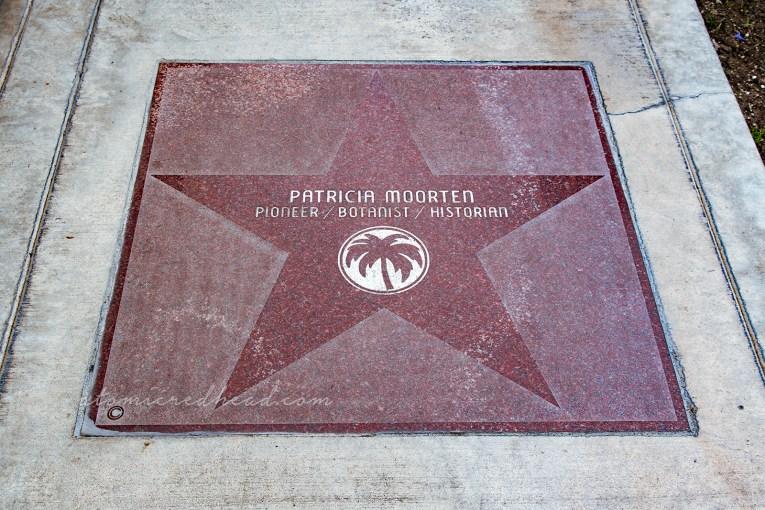 "A large dark red star reads ""Patricia Moorten Pioneer/Botanist/Historian"""