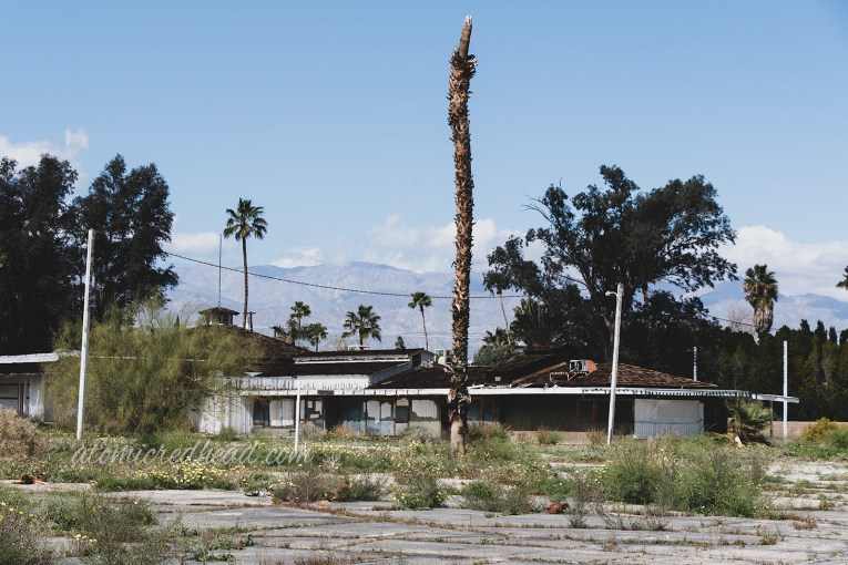 A decapitated palm tree juts from concrete in front of a boarded up building.