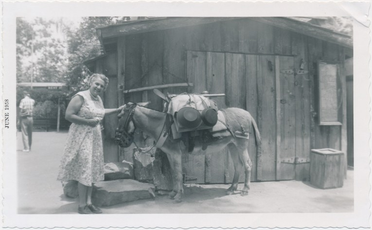 A black and white photo of a woman in a dress with a donkey carrying mining equipment.