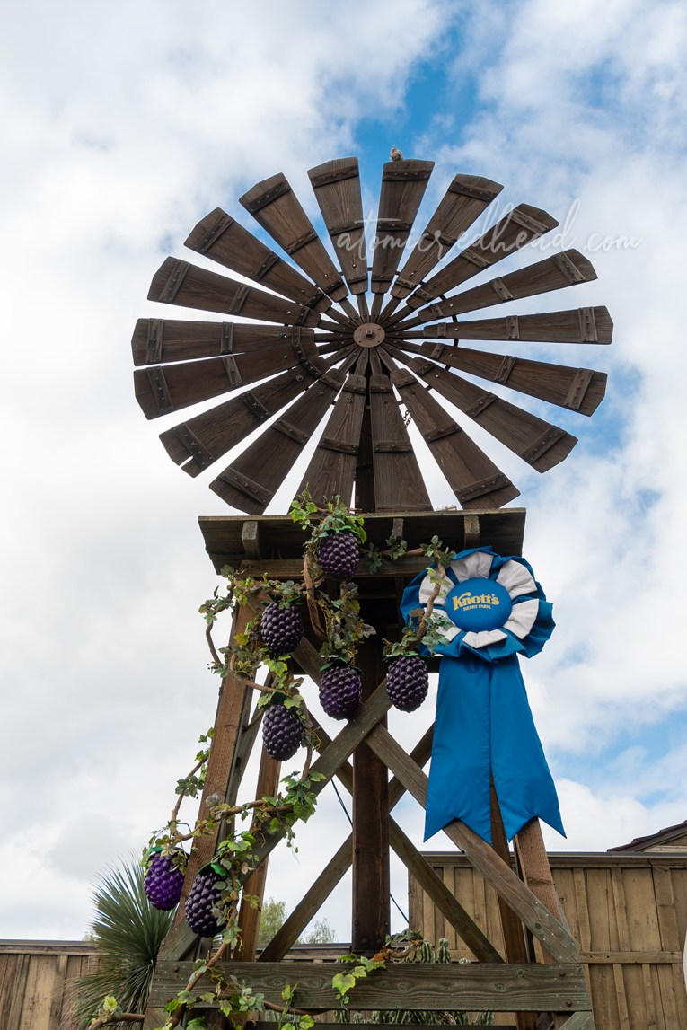 A tall old fashioned windmill features giant cascading berry vines.