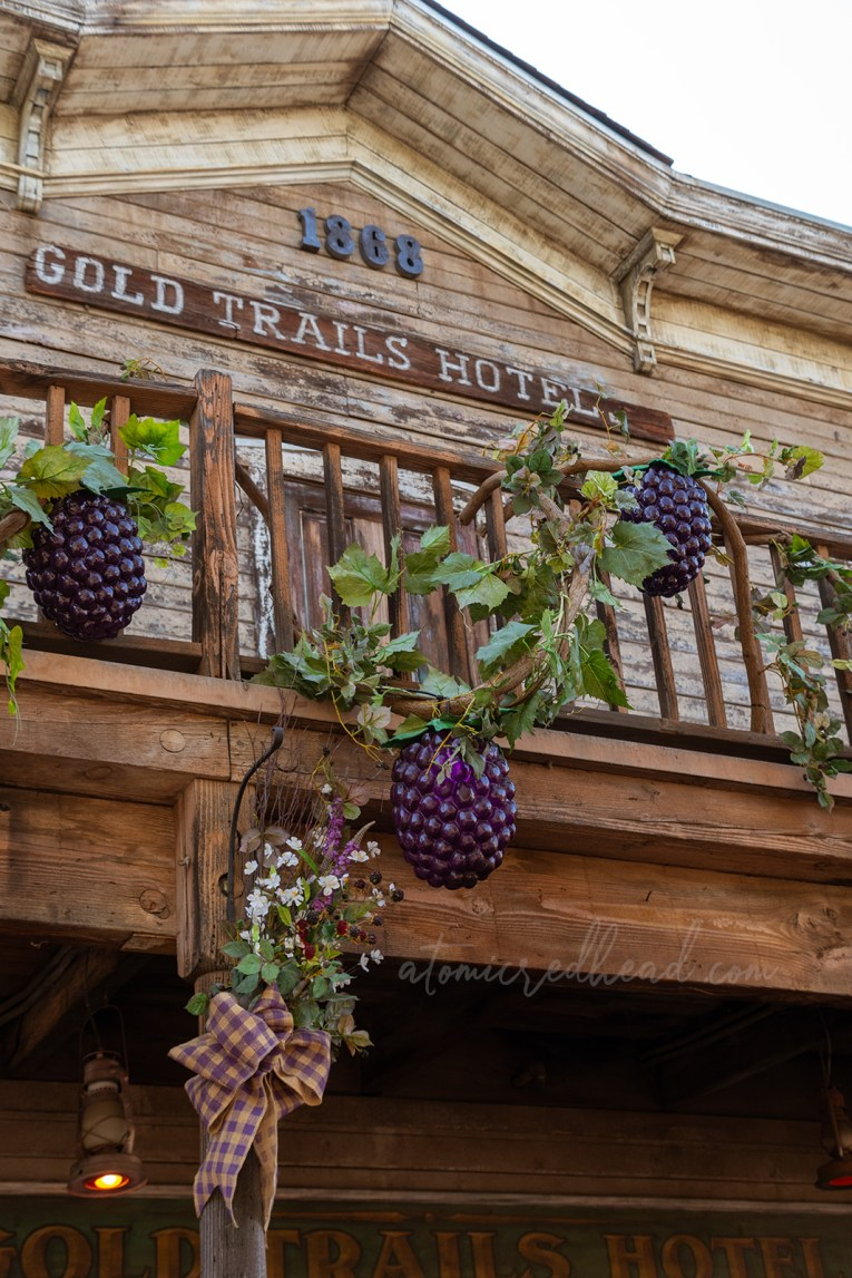 Giant boysenberries climb the balcony of the Gold Trails Hotel.
