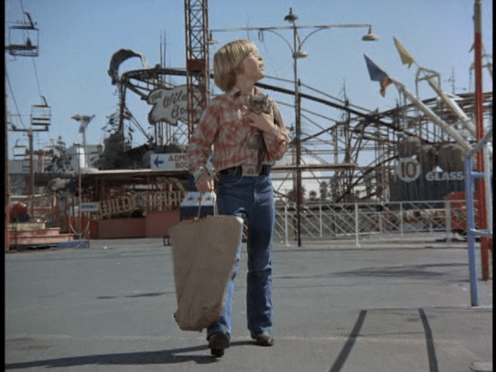 Screencap: A little boy looks around at the various rides.
