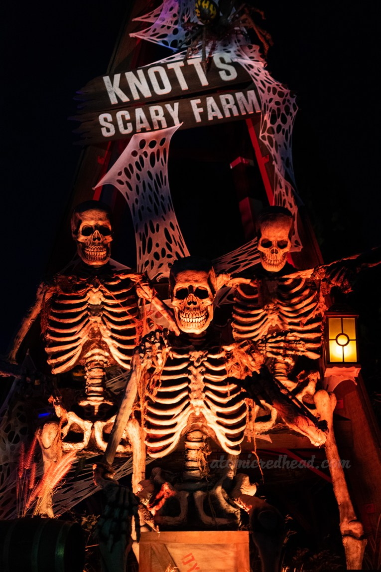 Three massive skeletons greet you as you enter Knott's Scary Farm.