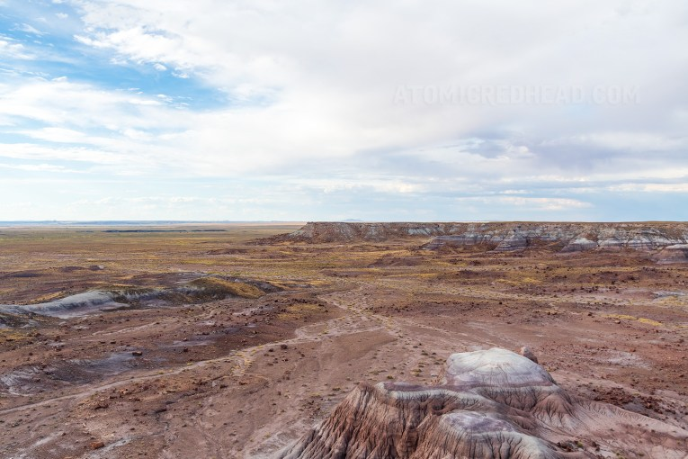 The Petrified Forest, an arid landscape of valleys and plateaus of warm browns and tans.