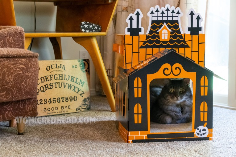 "An orange and black cardboard ""haunted"" house for our cat, Colonel Whiskers, who sits inside."