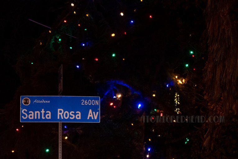 Multi-colored lights hang in trees above the street sign fro Santa Rosa Ave.