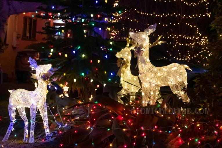White lighted deer.