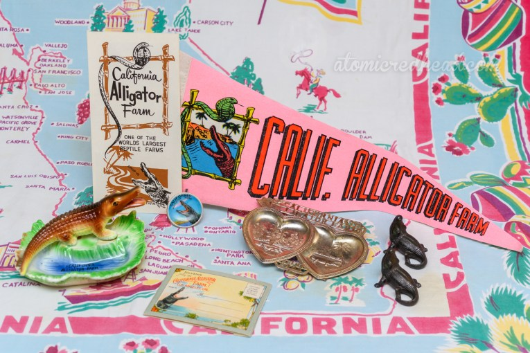 """My California Alligator Farm souvenir collection, including a flyer, pink pennant reading """"Cali. Alligator Farm"""" and an illustration of a gator and a cobra, a ceramic dish with an alligator by a pond, the inside of the pond reading """"California Alligator Farm"""", a small plate with a gator whose mouth is open wide, a silver dish shaped like twi hearts, one heart has a flamingo in it, the other a gator, a salt and pepper set of gators, and a small fold out picture booklet designed to be mailed."""