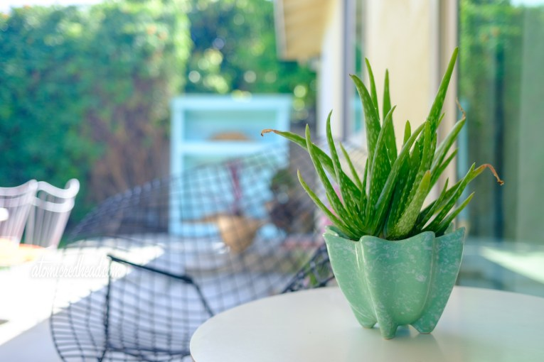 Close up of a green ceramic pot with a green aloe plant atop a white table.