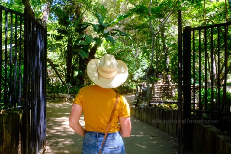 My back, as I walk through the gates of Ferndell.