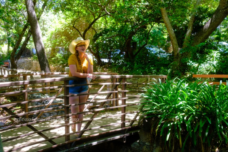 """Myself, wearing a cream straw cowboy hat, yellow shirt red text reading """"Red Dog California Cold Beer Restaurant Cocktails Good Vibes"""" and featuring a woman diving into a martini glass, and jean shorts, standing on a bridge over a small stream, surrounded by a variety of green plants."""