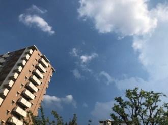 雲が、青い。
