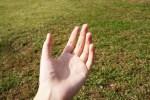 アトピーの人は手が荒れやすい。手のケア方法と対処法