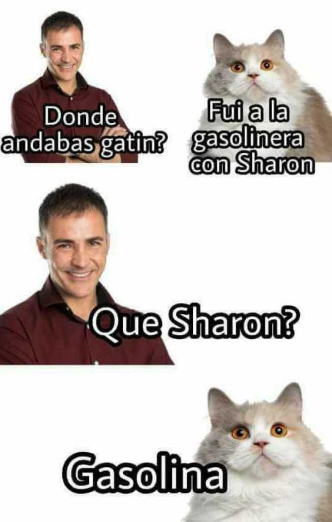 Gatín en la gasolinera con Sharon