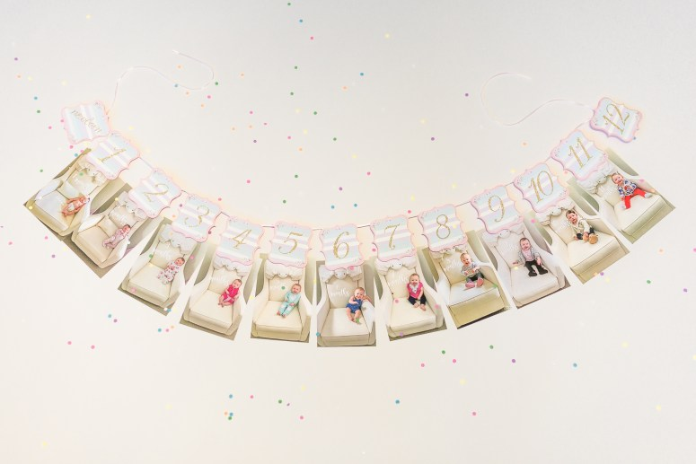 Printable Carousel Party 12 month banner