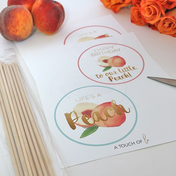 It's A Peach Party Circle Print and cut