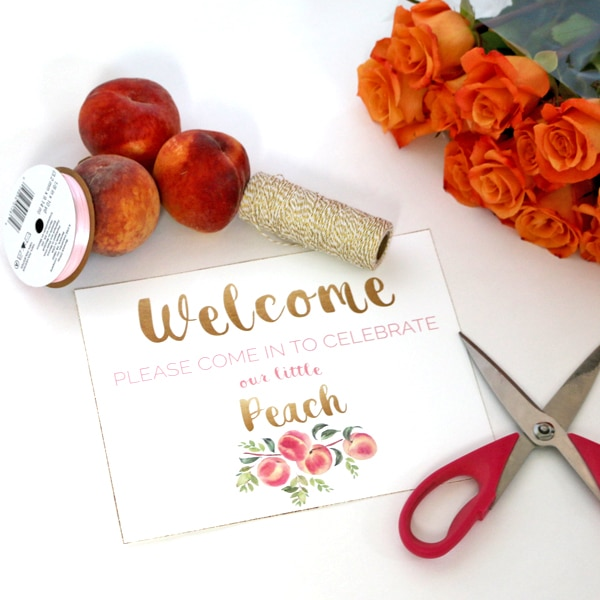 Peach Party Welcome Sign Printable